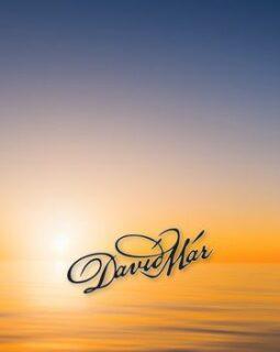 Davíð Már design